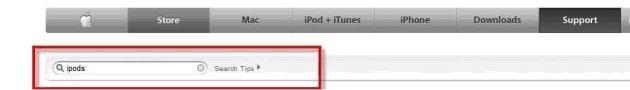 Apple's website searchbox